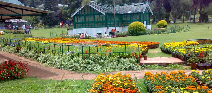 Ooty - Nature's Bounty